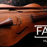 Image of a violin